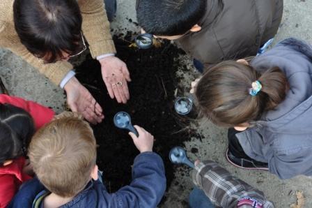 Enfants en observation du compost